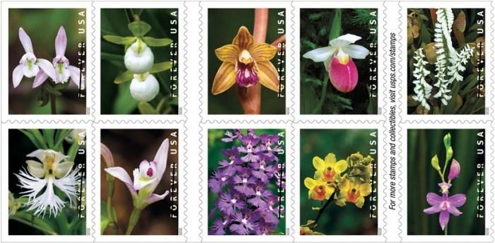 U.S. Postal Service Wild Orchids Forever Stamp