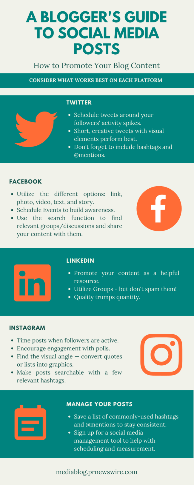 A Blogger's Guide to Social Media Posts infographic