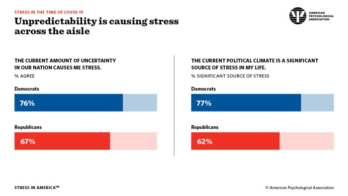 """American Psychological Association """"Stress in the Time of COVID-19"""" infographic"""