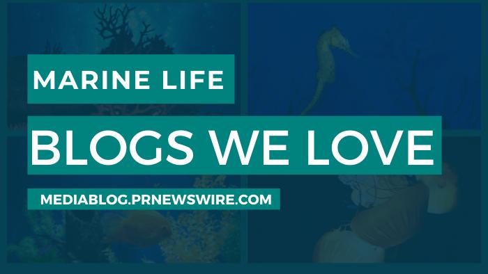 Marine Life Blogs We Love - mediablog.prnewswire.com