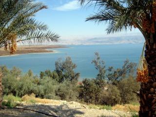 Mar da Galeia