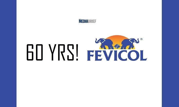 image-inpost-Fevicol-60-years-camnpaign-mediabrief