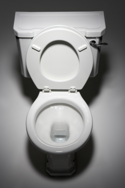 How Much Does It Cost To Replace A Toilet Au