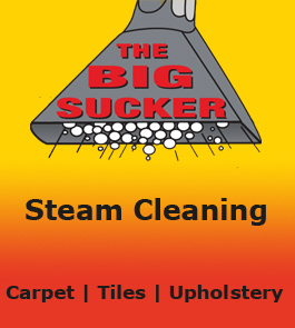 THE BIG SUCKER Carpet Cleaning Amp Pest Control Cairns