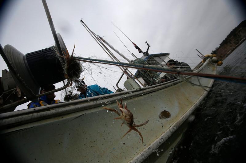 2013-05-31T090217Z_1636905694_GM1E95U0MZ601_RTRMADP_3_FUKUSHIMA-FISHERMEN.JPG