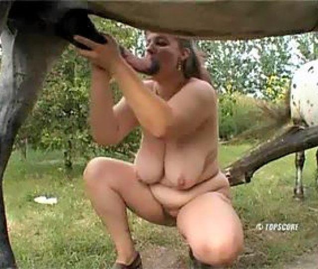 Slag In Casting Of Animal Porn