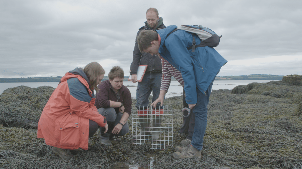 A group of people in outdoor clothes investigate a rockpool