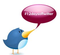 12daysoftwitter graphic (3)