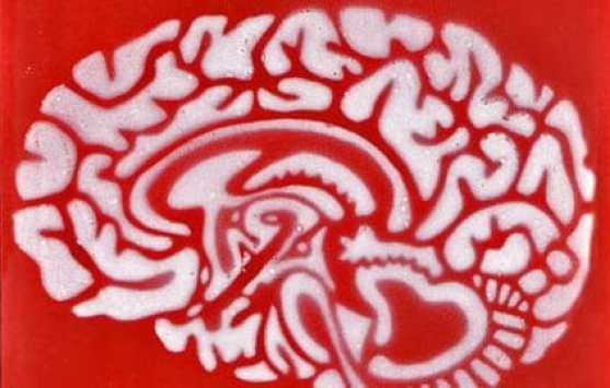mémoire et cerveau, l'externalisation dangereuse ?