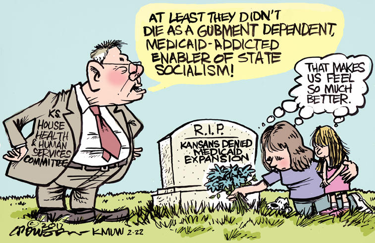 Image result for cartoons about medicaid expansion