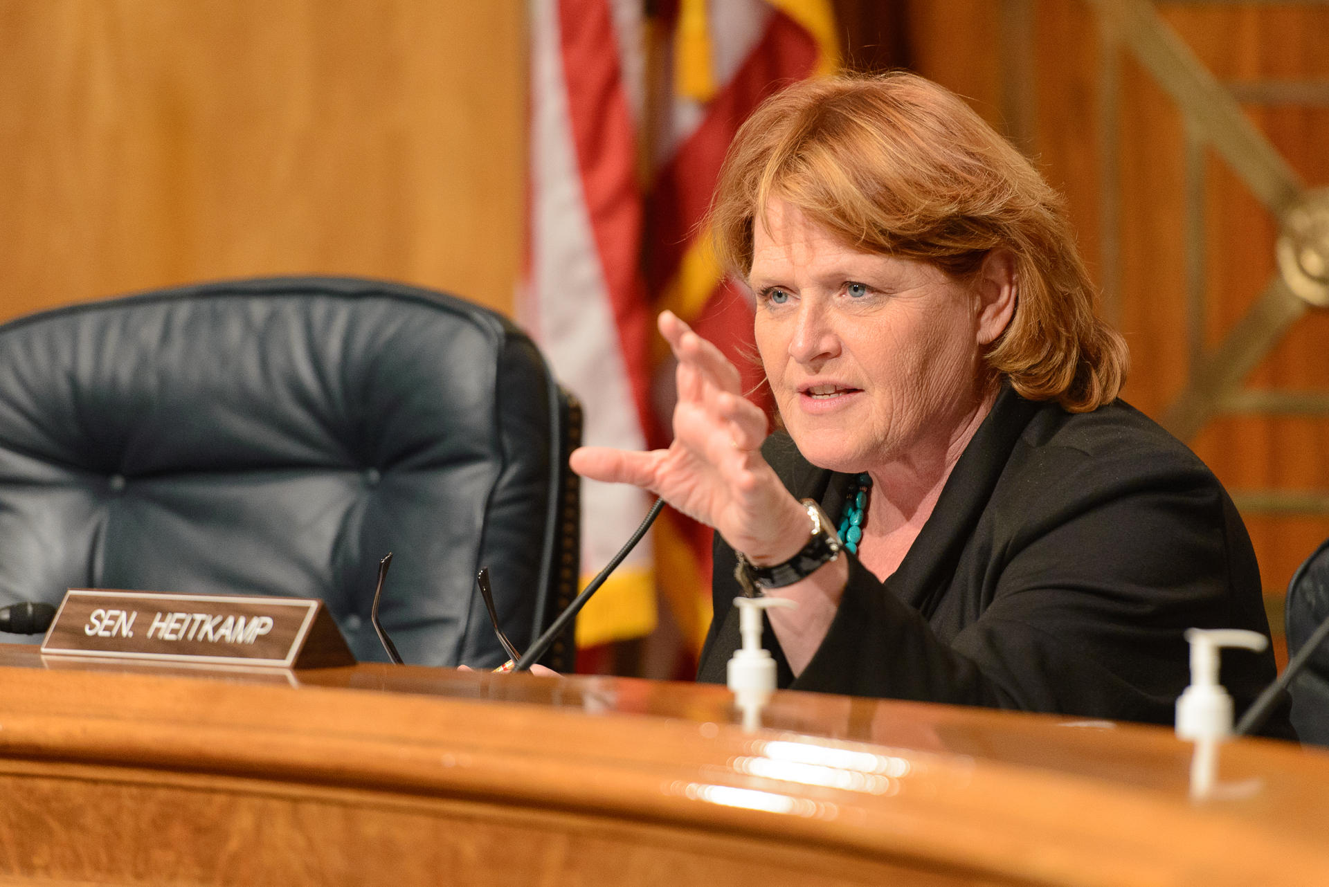 Image result for photos of heidi heitkamp