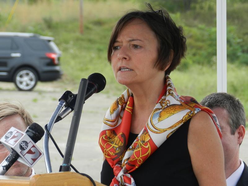 EPA Region 5 director Susan Hedman (file photo).