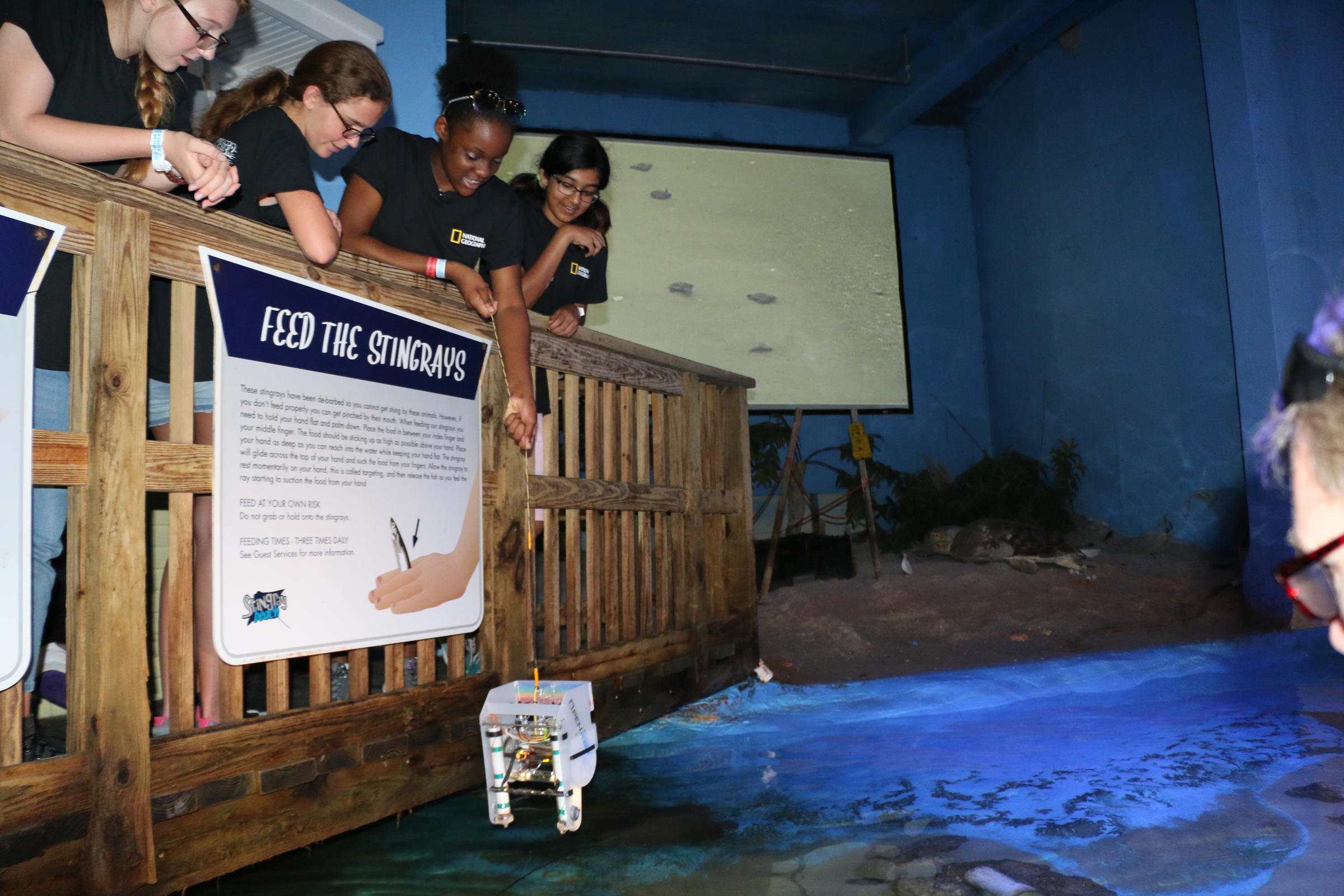 A Lesson In Marine Science At Girls Underwater Robot Camp