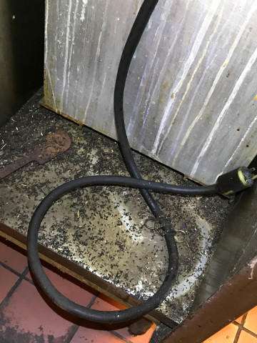 <p>Rodent droppings accumulated underneath a piece of kitchen equipment at the Human Solutions Family Center.&nbsp;</p>