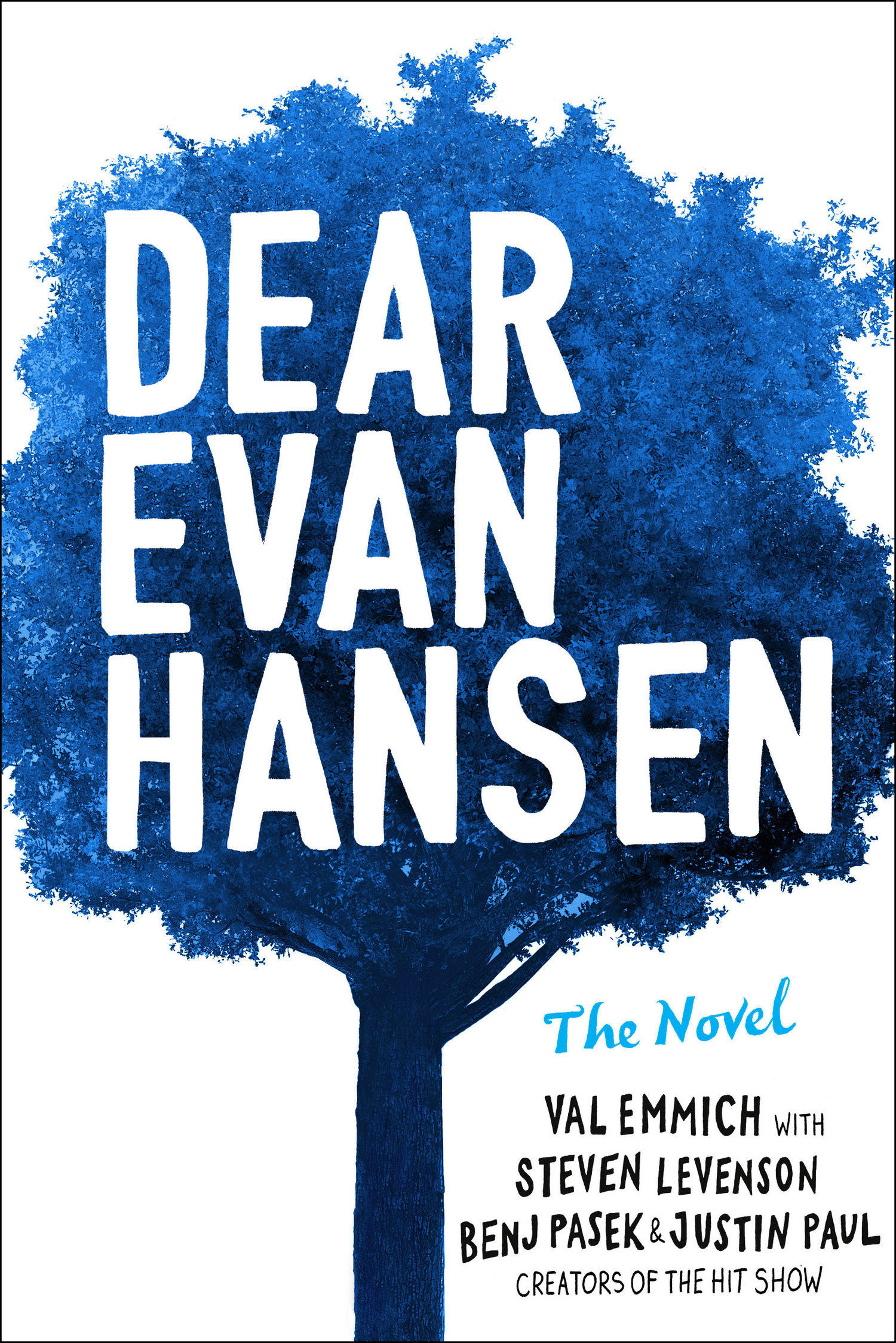 Image result for dear evan hansen novel cover