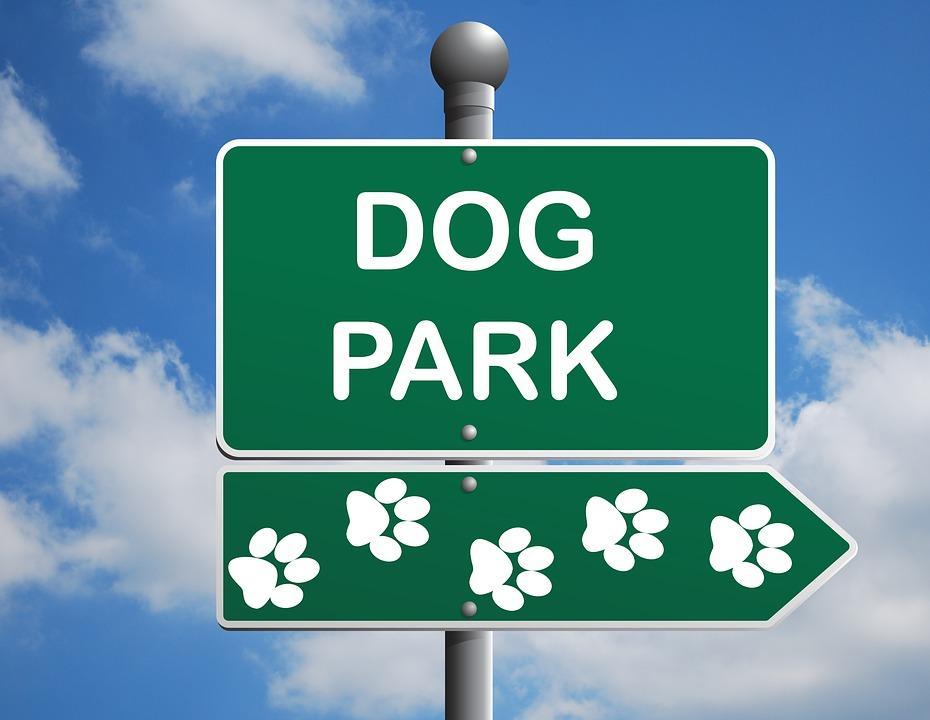 Image result for dog park clipart