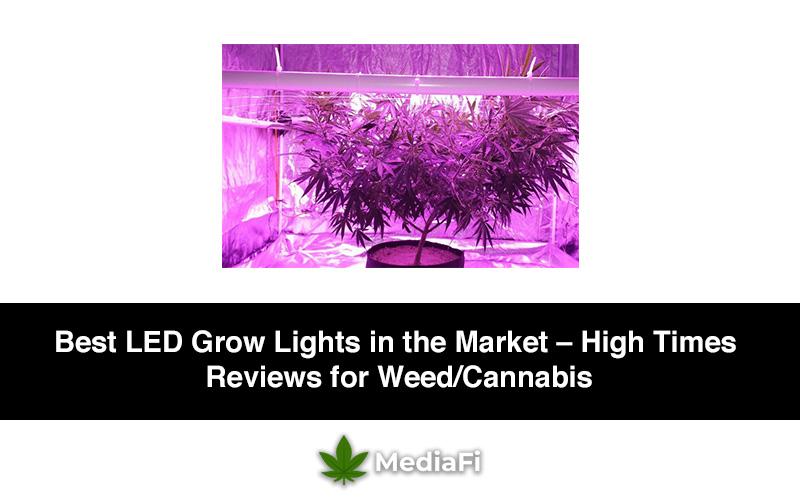 Best Led Grow Lights High Times