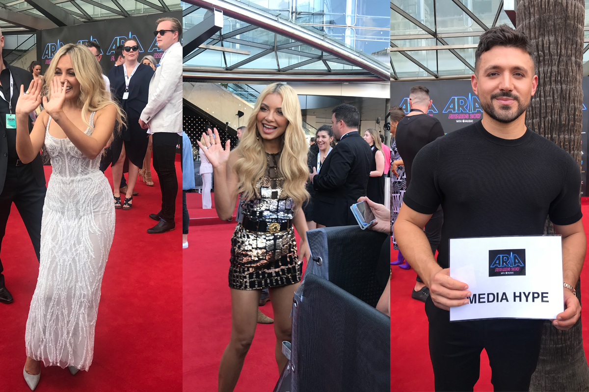 ARIA Awards 2017 Red Carpet: Australia's Biggest Night In Music!