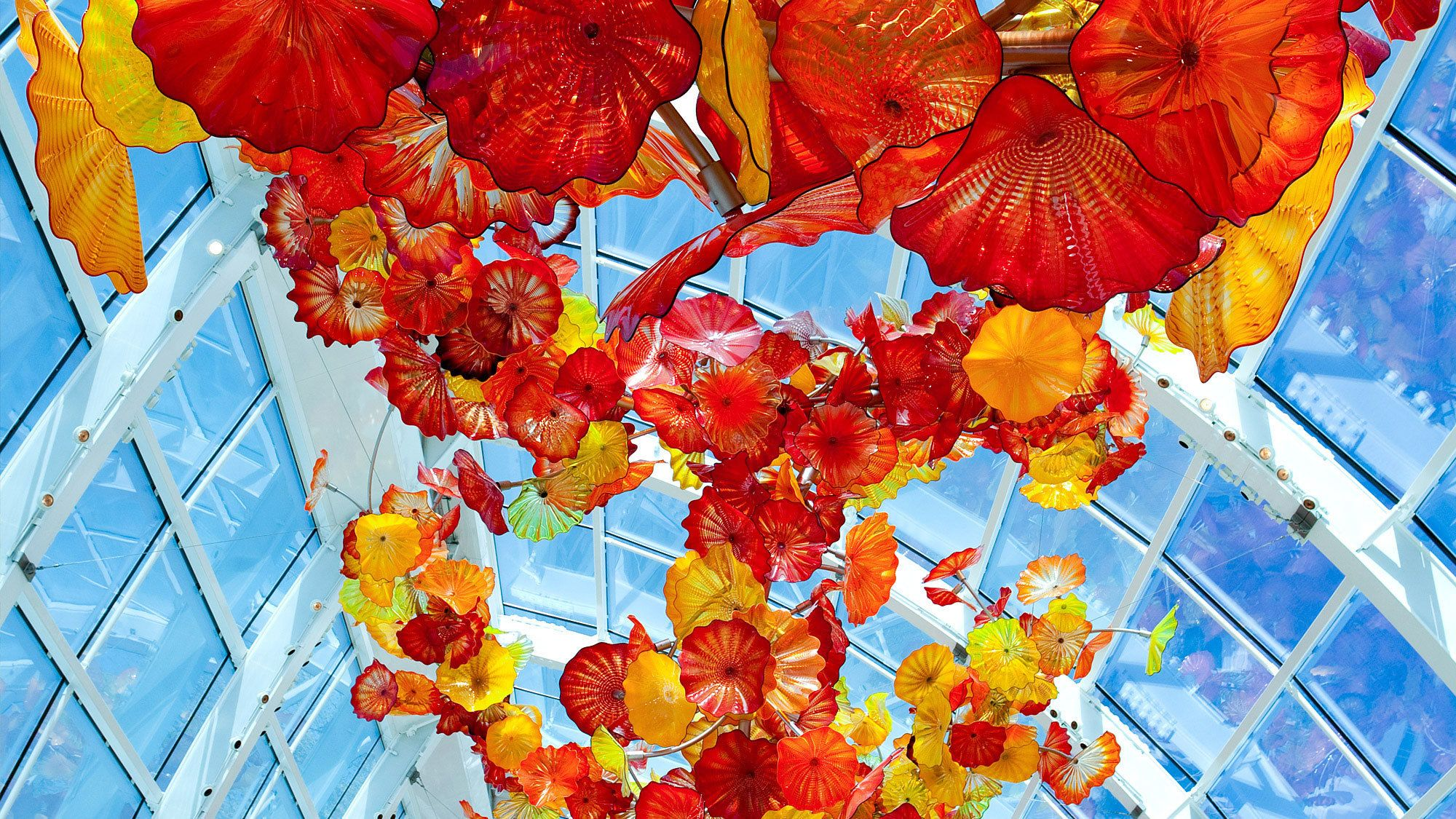 It is amazing for curious children and adults alike to watch seeds in their garden grow and then nurture them into something much larger than the tiny. Tiket Chihuly Garden And Glass Seattle