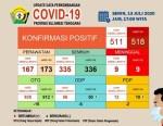 Data Perkembangan Covid-19 13 Juli