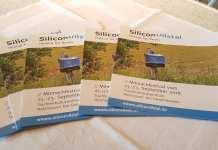 Silicon Vilstal Startup Studie