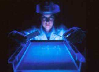 Intel, Lenovo und Google helfen beim Coronavirus