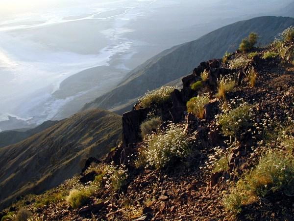 Dante's View / National Park Service