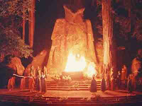 bohemian grove to cut tress for cash