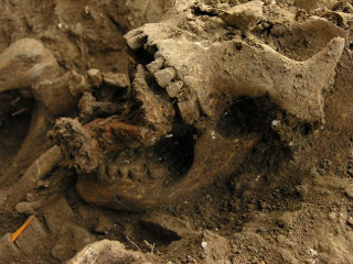 800-year-old 'witches graveyard' discovered in italy
