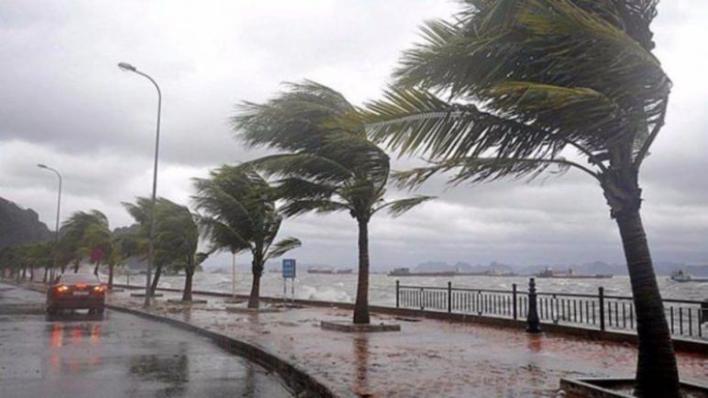 عواصف تركيا