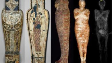 الإعلان عن اكتشاف أول مومياء في العالم لامرأة حامل