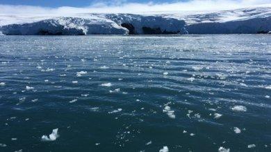 علماء يتحدثون عن كارثة جليدية محتملة تصيب الملايين من البشر