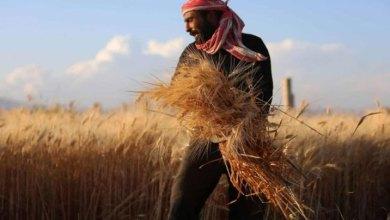 موسكو تعمل على تأمين قرضاً مالياً للأسد لشراع الأغذية والحبوب