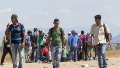 لندن تحتجز 828 شخصاً من المهاجرين حاولوا التسلل إليها