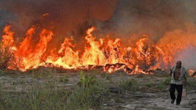 وزارة الطوارئ الروسية تعلن عن 50 حريق مستعر في البلاد