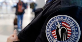 Hundreds Of TSA Agents Are Calling In Sick To Work Jobs That Pay, Says Union