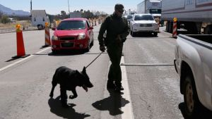 Border protection agents make largest fentanyl bust in U.S. history