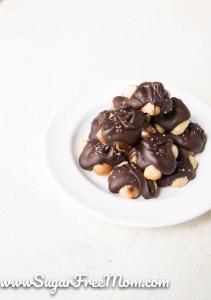 Keto Salted Macadamia Nut Clusters