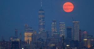 1 in 3 NYC small businesses won't survive pandemic