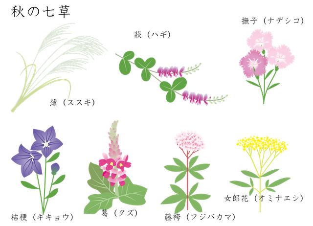 nanakusa14