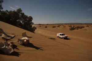 Rallye 4x4