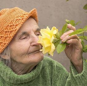 Comment trouver une maison de retraite médicalisée à Brest ?