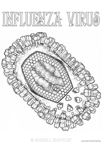 Russell Kightley Premium Scientific Pictures FREE