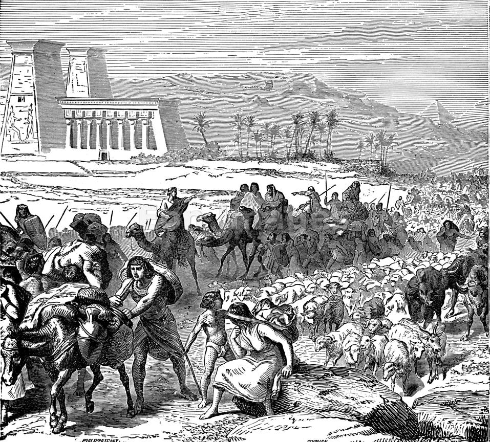 Image result for image of the exodus from egypt