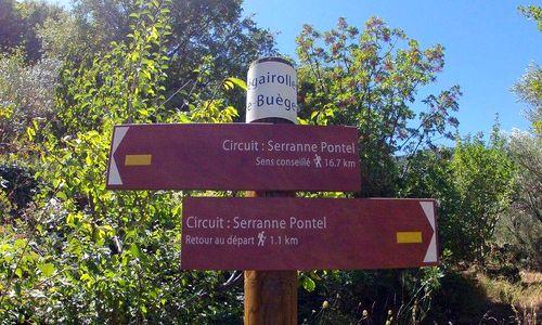 Randonnée Randonnée en Pic Saint Loup - Topoguide