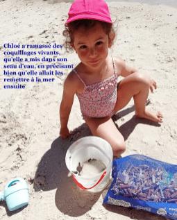 Chloé a ramassé des coquillages vivants, qu'elle a mis dans son seau, en précisant bien qu'elle allait les remettre à la mer ensuite.