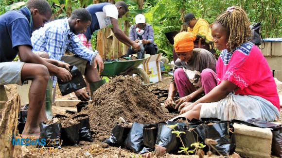 Agriculture/Entreprenariat: La FAO en soutien