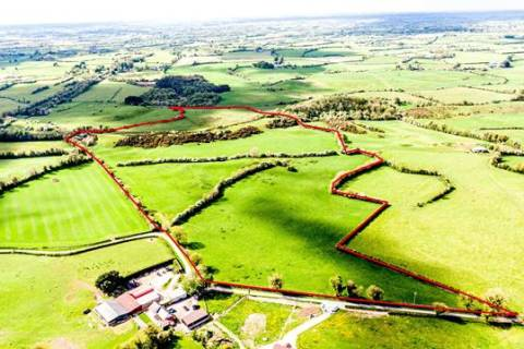 Bracklin Little, Kilbeggan, Co. Westmeath
