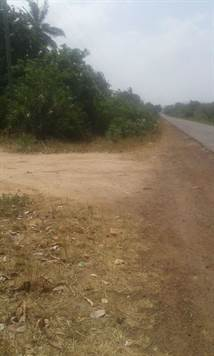 Land For Sale in Msambweni Kenya