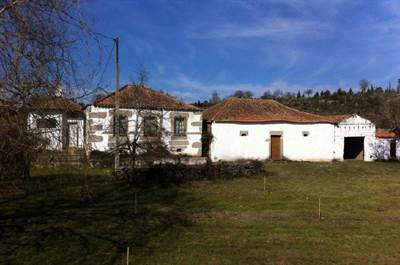 Farm for Sale in Pinhel